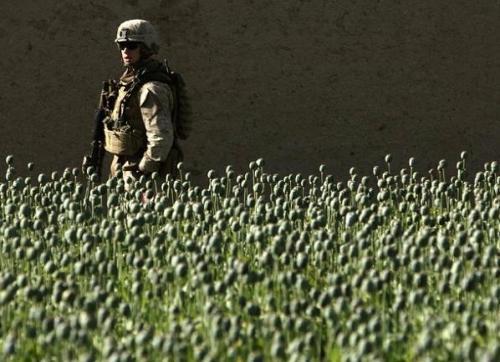 Drogengeschäfte V Afghanistan  Archiv des verbotenen Wissens